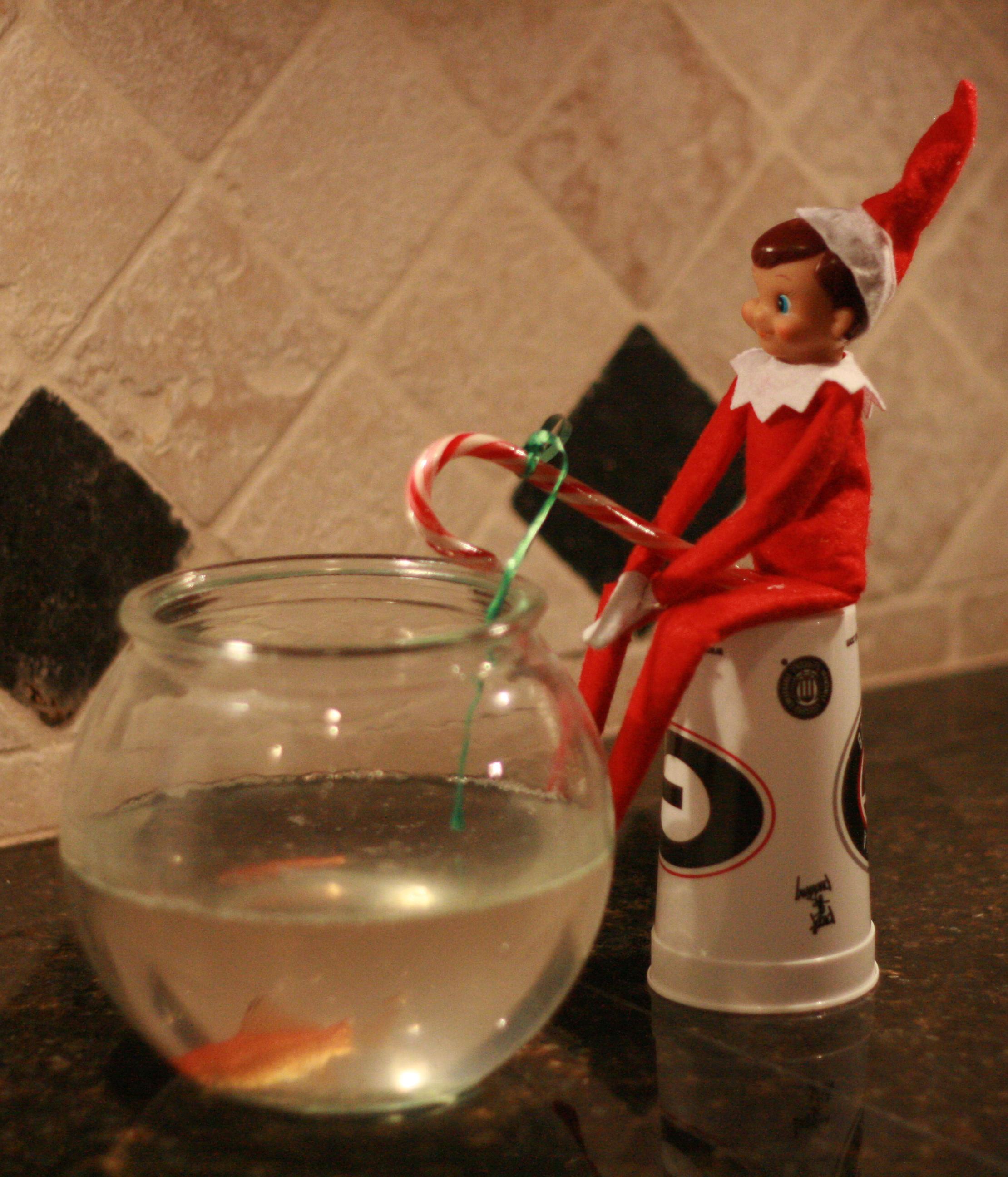 2011 december for Elf on the shelf fishing